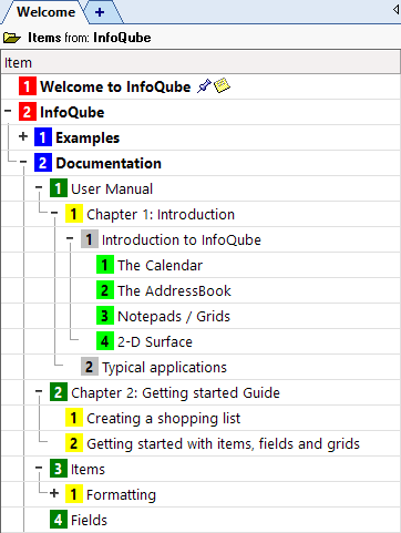 InfoQube User Manual